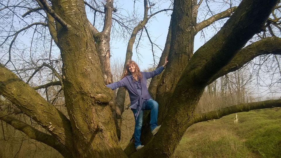 L'Albero cambia le foglie e conserva le radici. Tra i rami dei grandi alberi ci si arrampica per guardare meglio il cielo!